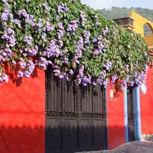 Colorful wall in Ajijic, Mexico